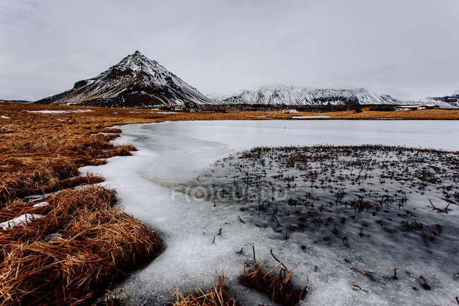 Dry grass and snowy mountain — Stock Photo