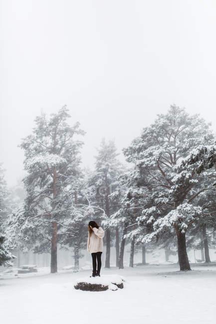 Frau steht auf Felsen im verschneiten Wald — Stockfoto