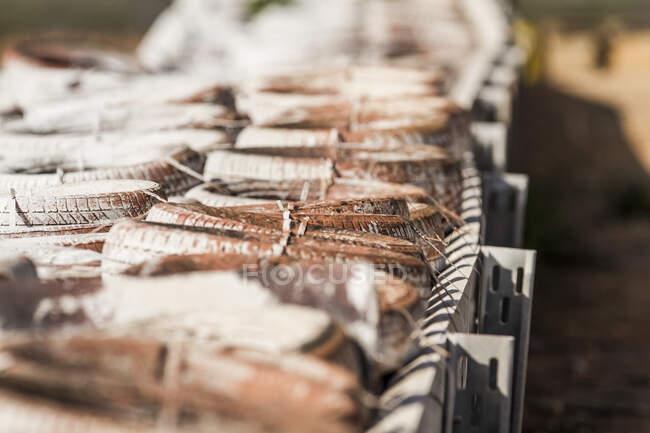 Використання гумових коліс на захисній металевій огорожі в денний сонячний м'який фокус. — стокове фото