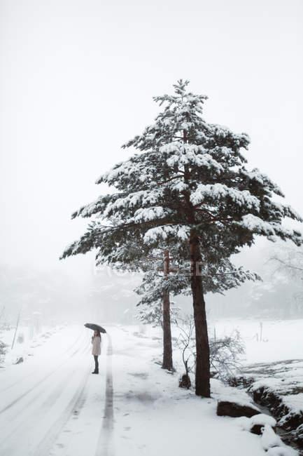 Mujer con pie de sombrilla en invierno - foto de stock