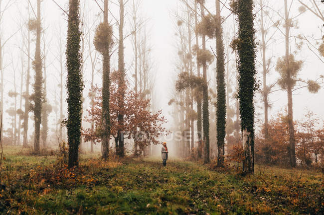 Woman standing in foggy forest — Stock Photo