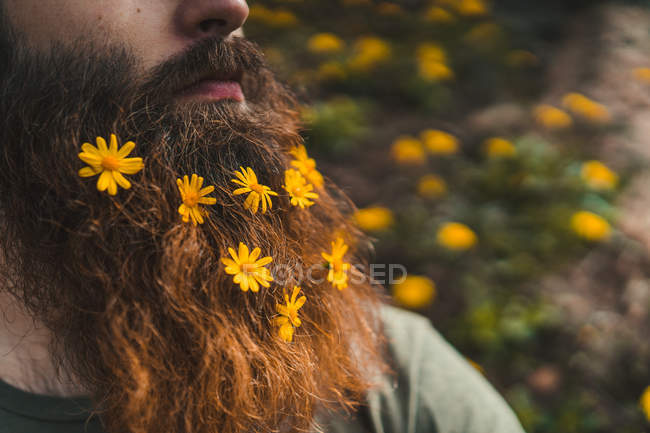 Man with flowers in beard — Stock Photo