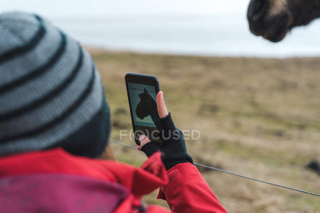 Людина фотографують ісландських коней — стокове фото