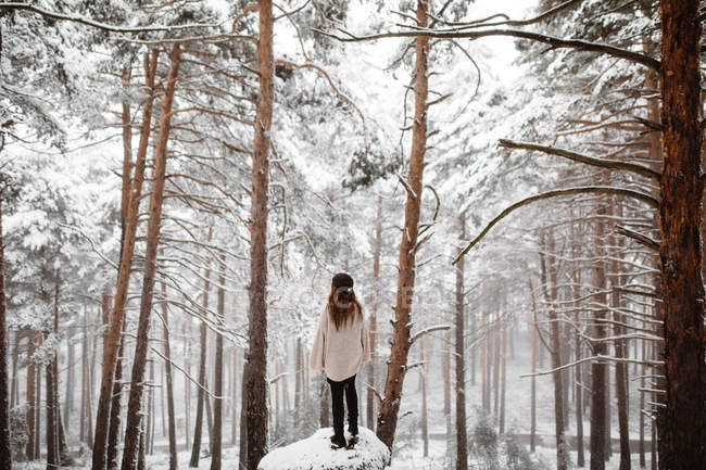 Woman standing on rock in snowy forest — Stock Photo