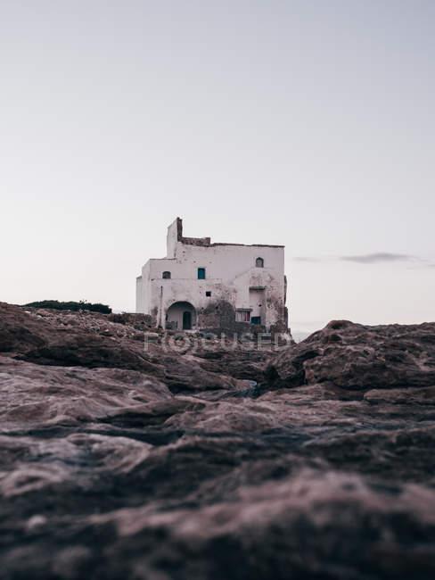 Шорсткий будинку в природі — стокове фото