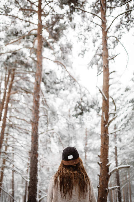 Woman wearing cap in snowy forest — Stock Photo