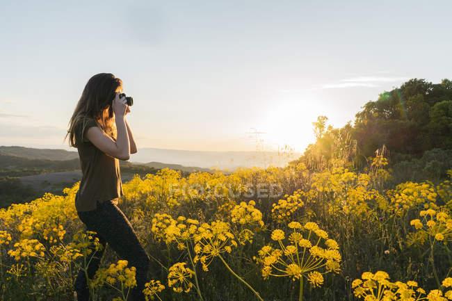 Mulher tirando foto com flores amarelas — Fotografia de Stock