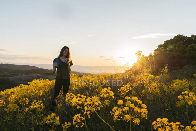 Frau nutzt Smartphone zwischen Wildblumen — Stockfoto