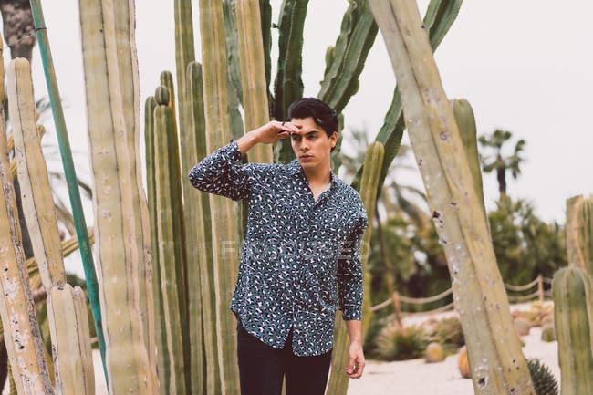 Man standing at cactus — Stock Photo