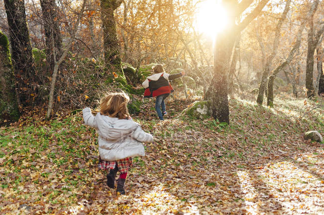 Kids playing in the forest in the countryside — Stock Photo