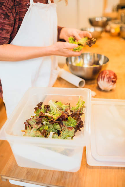 Female cook preparing lettuce — Stock Photo