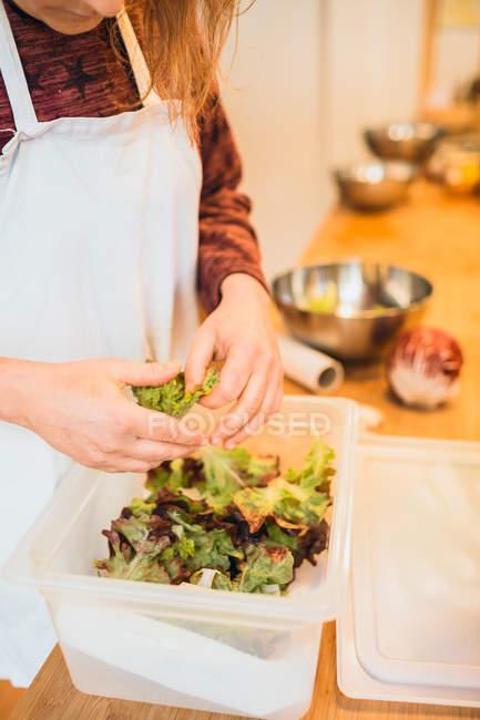 Mujer cocinero preparar lechuga - foto de stock
