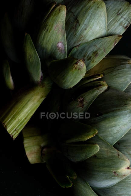Alcachofra fresca verde — Fotografia de Stock