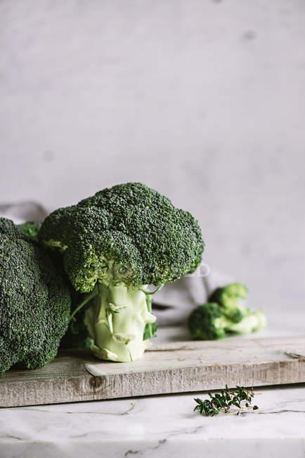 Frische Brokkoli-Röschen — Stockfoto