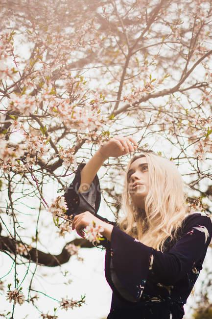 Retrato de jovem loira Mulher em pé na árvore florescente — Fotografia de Stock