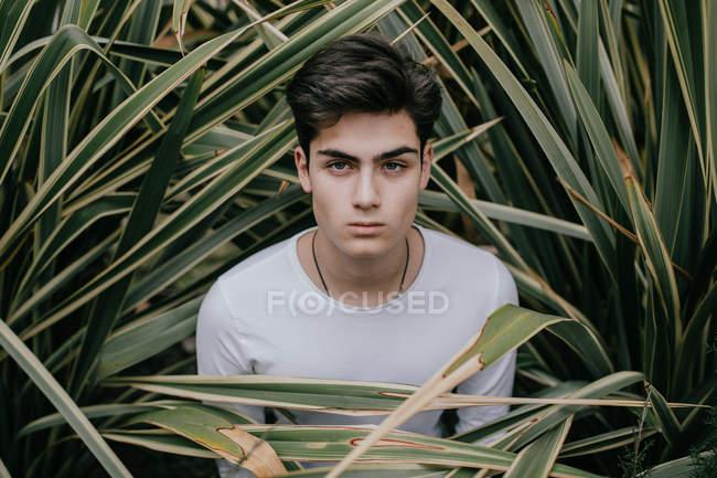 Guapo joven adolescente de moda de pie en el arbusto verde - foto de stock