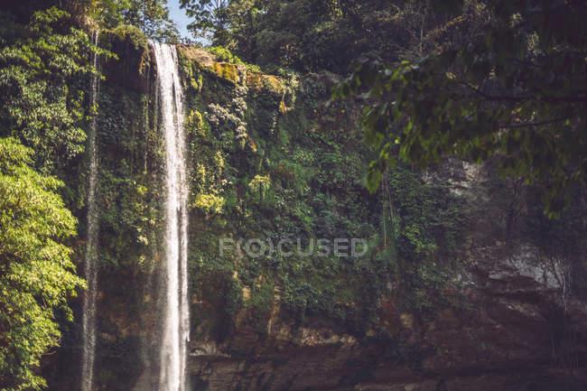 Ruisseau d'eau tombant de falaise dans la jungle mexicaine majestueuse — Photo de stock