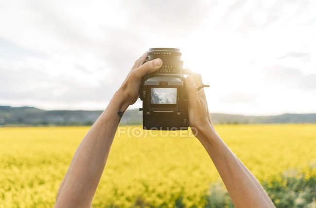Close-up de mãos humanas tirando fotos de flores amarelas na natureza — Fotografia de Stock