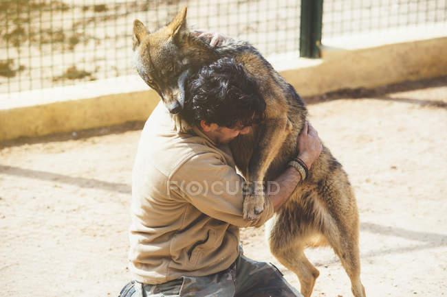 Homme aux prises avec le loup en cage au zoo — Photo de stock