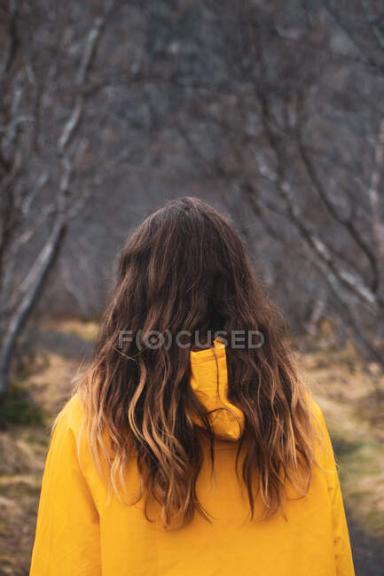 Person standing on countryside road — Stock Photo