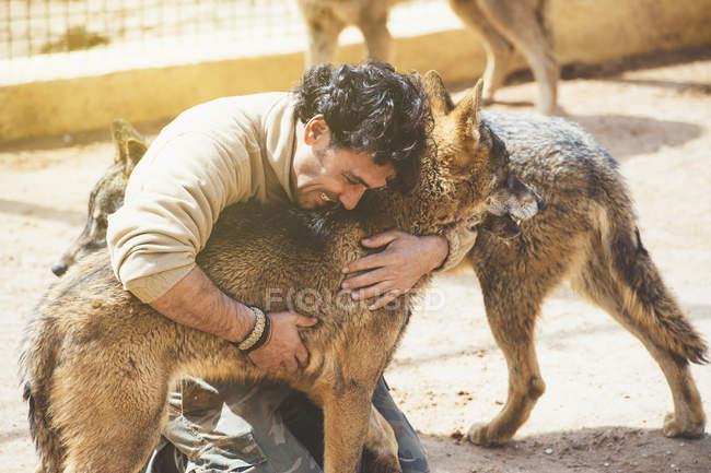 Усміхаючись людина обіймає коричневий вовків в зоопарку — стокове фото