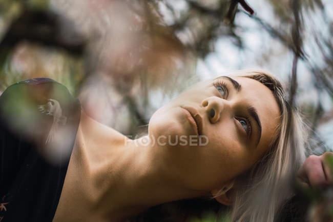 Woman leaning on tree and looking up — Stock Photo