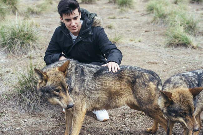 Молодий чоловік сидів у зоопарк і гладила вовків — стокове фото