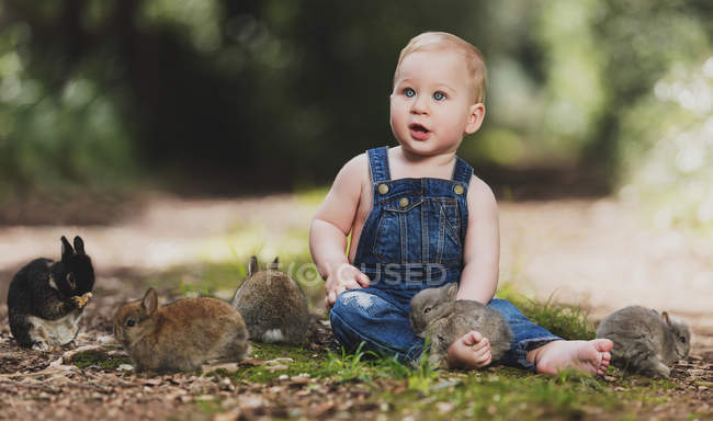 Cute little boy in denim clothes sitting with little rabbits on the ground in park — Stock Photo