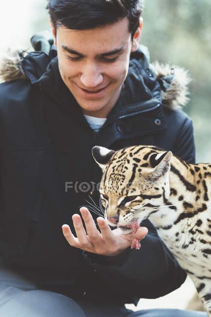 Улыбающийся молодой человек, кормления леопарда в зоопарке — стоковое фото