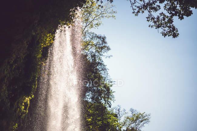 Ruisseau d'eau tombant de falaise dans la jungle mexicaine — Photo de stock