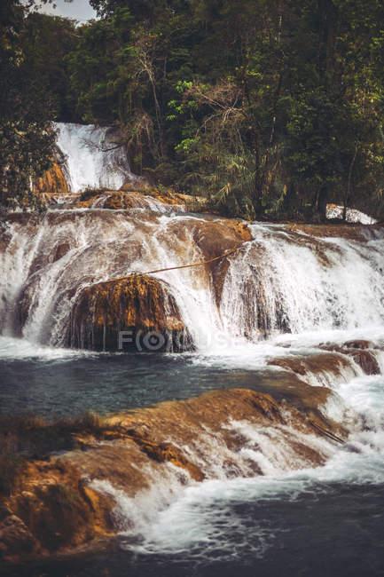 Водопад плескается в джунглях, Чьяпас, Мексика — стоковое фото