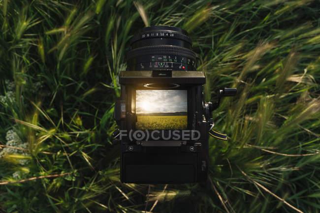 Nahaufnahme einer Retro-Fotokamera im Gras mit einem Foto der Natur mit gelben Blumen — Stockfoto