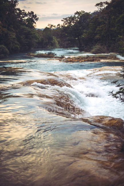 Flowing river with rocks Mexican jungle — Stock Photo