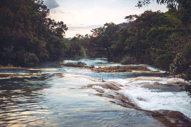 Ruisseau bleu coulant dans la jungle mexicaine — Photo de stock