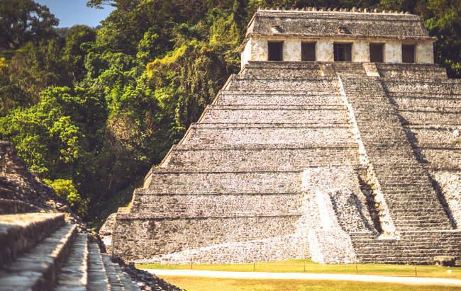 Майя піраміди і дерева в місті Паленке, Чьяпас, Мексика — стокове фото