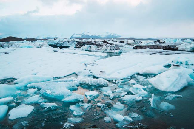 Pedaços de gelo boiando na água do mar — Fotografia de Stock