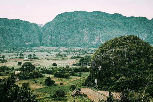 Incredibile paesaggio di verdi piantagioni e terre tropicali su sfondo di montagne verdi, Cuba — Foto stock