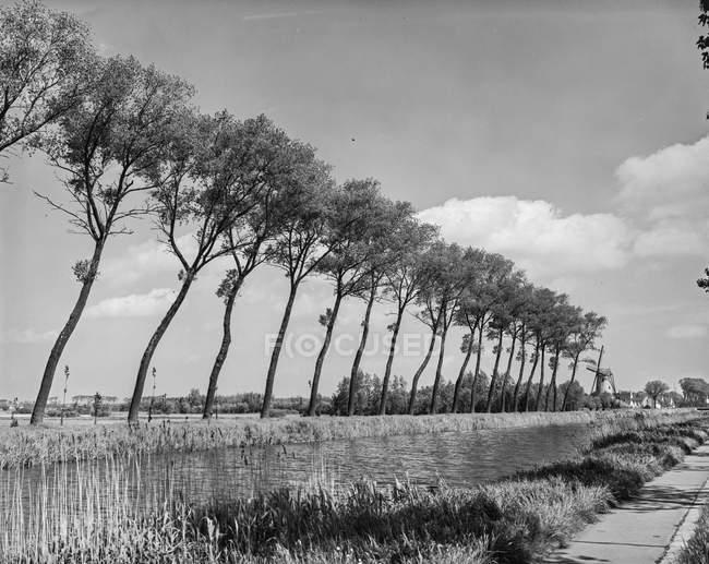 Ruhiges langsam schwimmendes Flusswasser umgeben von Bäumen und Wolken, Belgien. — Stockfoto