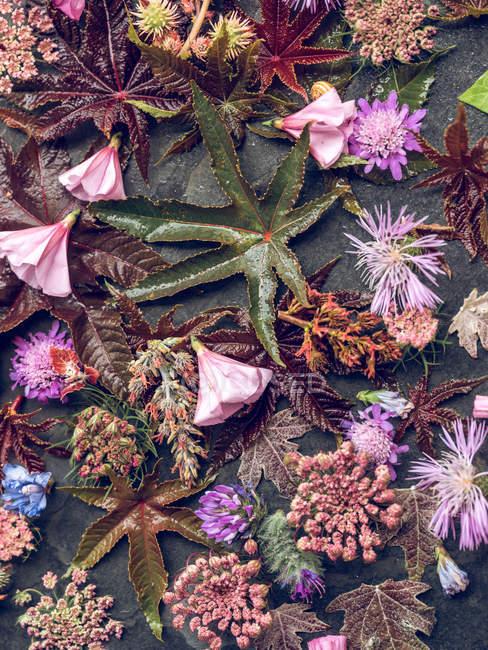 Листва и цветы на столе — стоковое фото