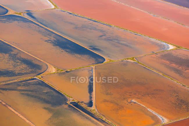 Orange fields and marsh — Stock Photo