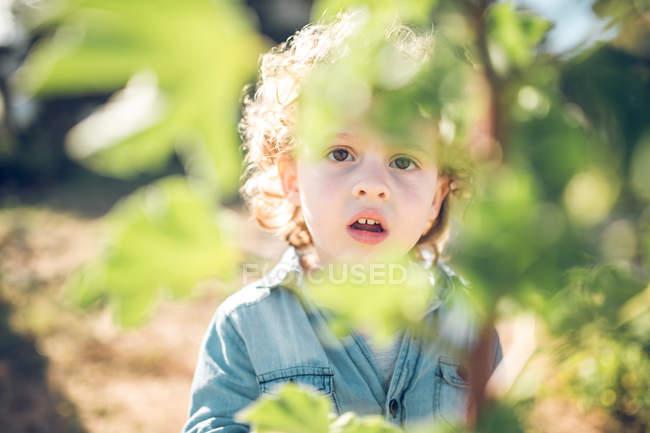 Удивленный мальчик, стоящий у куста — стоковое фото