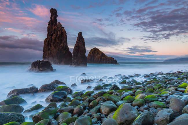 Mossy boulders on seashore — Stock Photo
