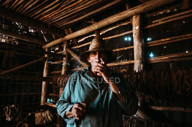 La Habana, Kuba - 1. Mai 2018: Lokaler Mann raucht Zigarre und suchen in der Kamera unter Tabak Blätter trocknen im Bauernhof Scheune — Stockfoto