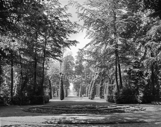 Fotografia em preto e branco da paisagem do parque com árvores e arbustos, Bélgica — Fotografia de Stock