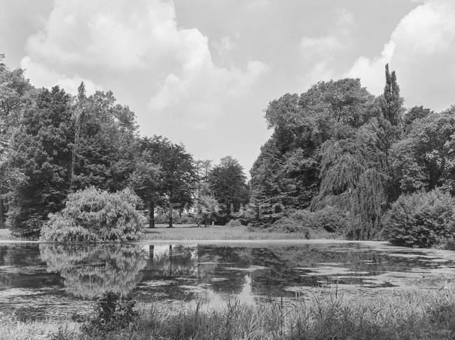 Aguas fluviales tranquilas y fluidas rodeadas de árboles y montañas, Bélgica . - foto de stock