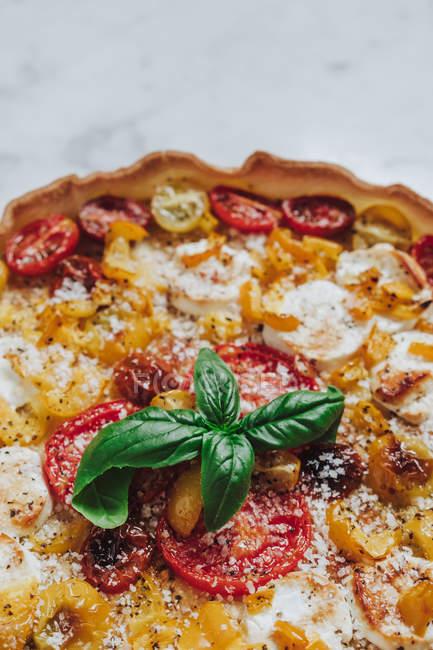 Gebackene Pizza mit Tomaten — Stockfoto