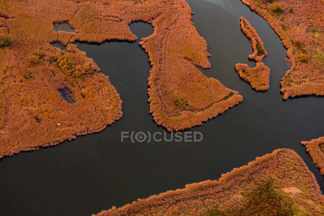 Темная река, плавающая в оранжевом болоте — стоковое фото