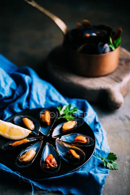 Gekochte frische Muscheln — Stockfoto