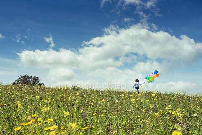 Элементарные возраста мальчик работает на цветочном лугу с красочными шарами — стоковое фото