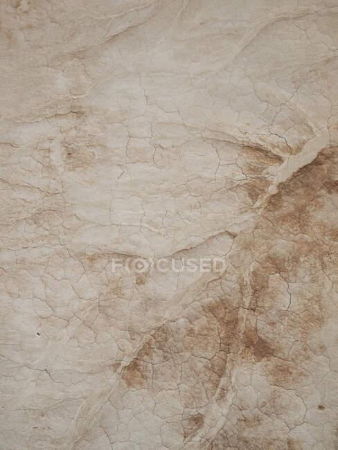 Background of texture ground in drought with cracks, Uzbekistan - foto de stock